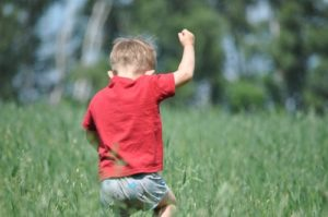 enseñarles a ser respetuosos con la naturaleza es necesario para el cuidado del medio ambiente