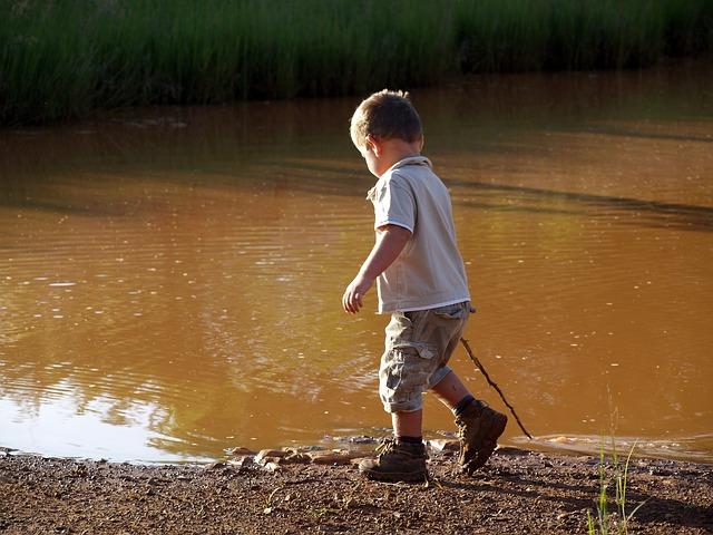 Enseñar ecología a los niños es necesario para el cuidado del medio ambiente