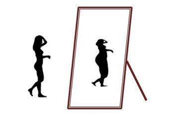 Silueta anoréxica