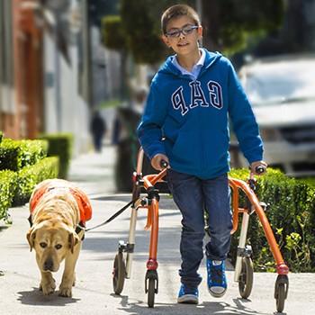 Tipos De Discapacidad F Sica